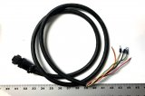 63925 Top to Bottom Cord, Male, Hardwired